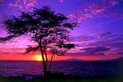 90 Stunning Sunsets HQ Wallpapers